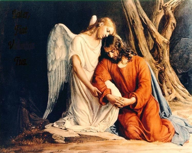 Lent Devotion, Day 4 of 44